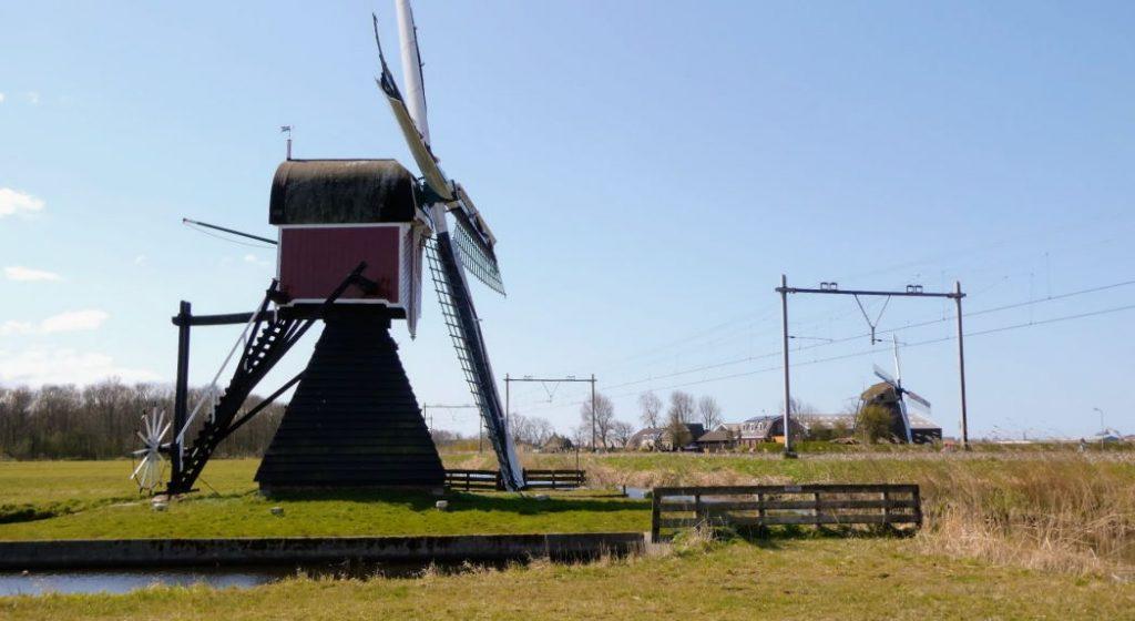 Lageveense polder