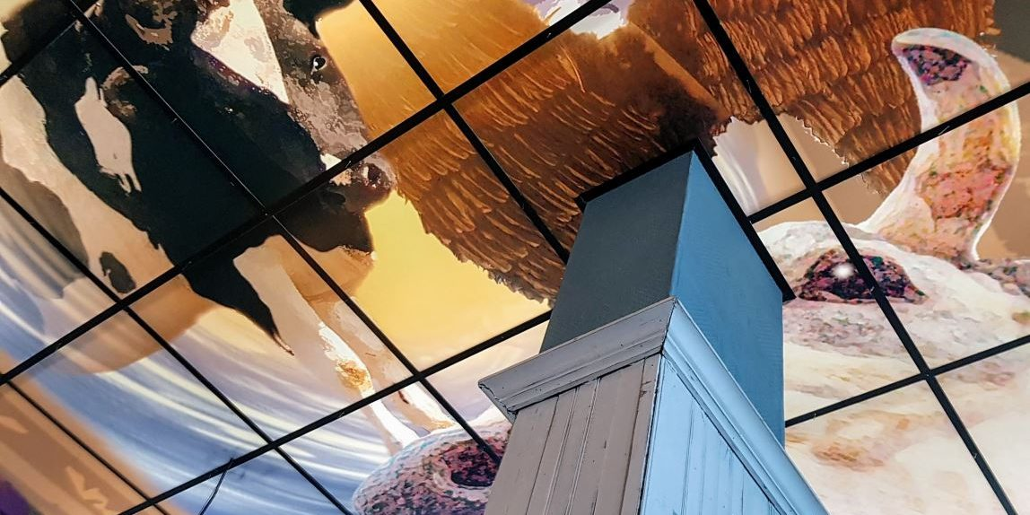 Koeienhemel plafond