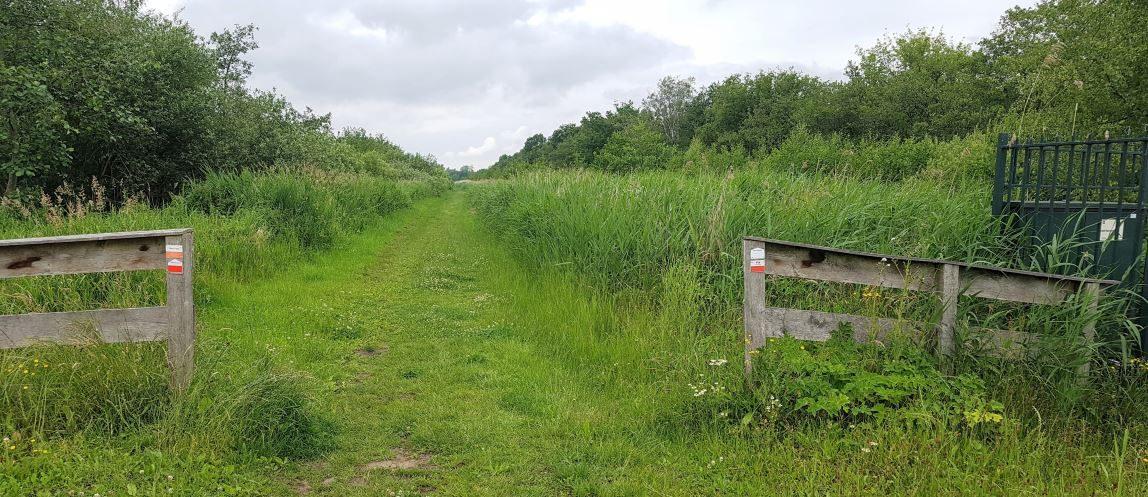 Graspad bij de Ankeveense plassen