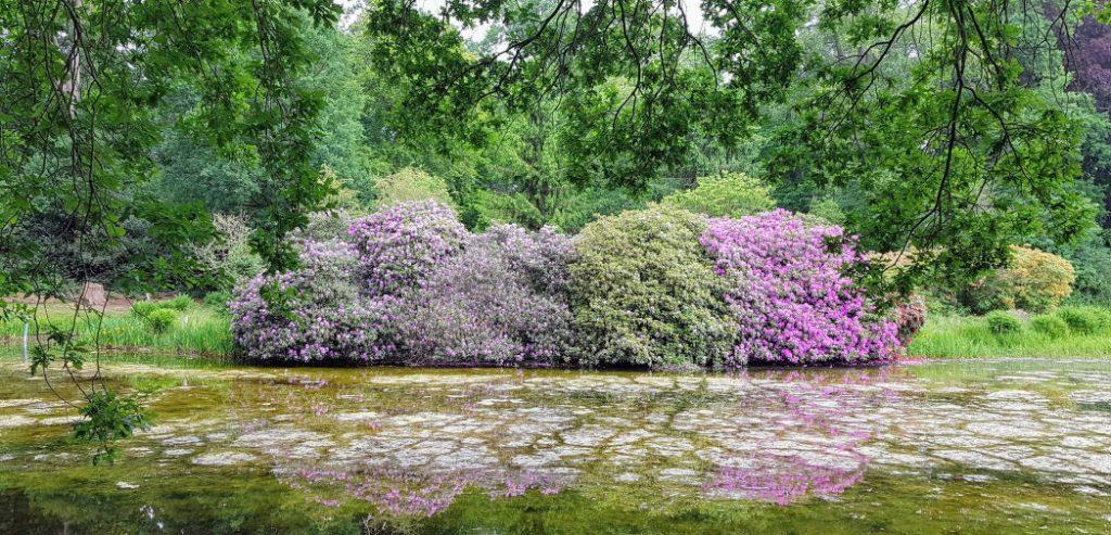 Tuin van Kasteel Renswoude
