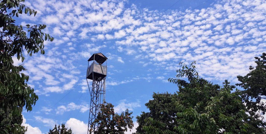 Heuen van spreeuwen vanuit de wachttoren